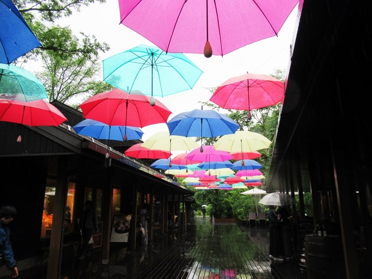 梅雨時イベント