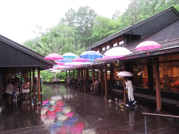 たくさんの傘が